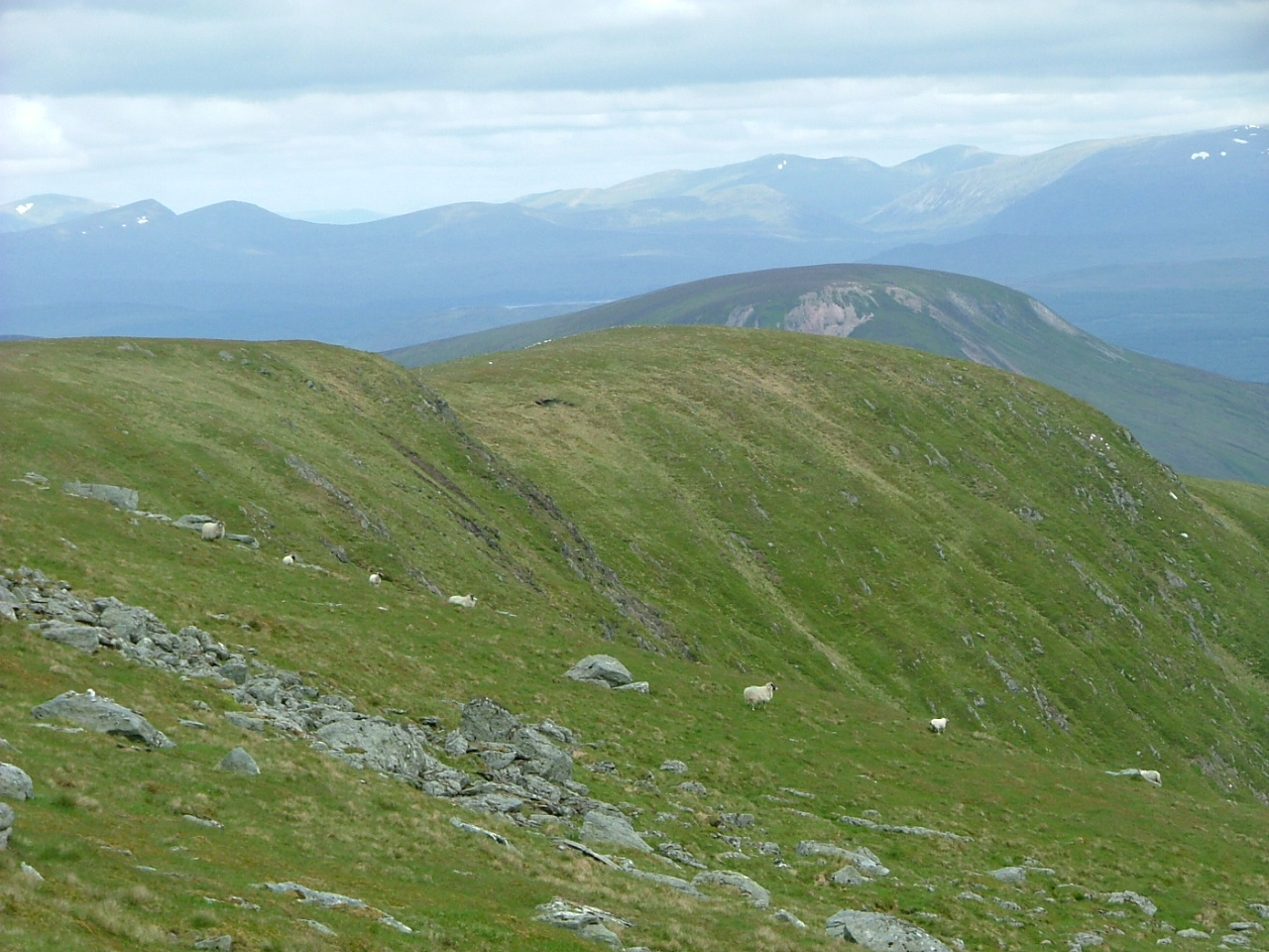 10 Looking north from Meall garbh, Glenlyon